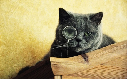 Monocle chat