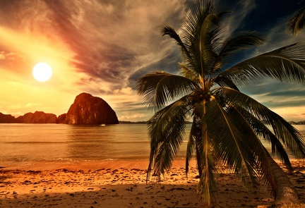 Tropical beach - Wallpaper