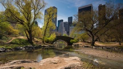 Central park - Wallpaper
