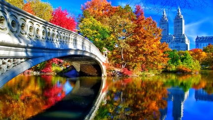 Central Park Bridge New York
