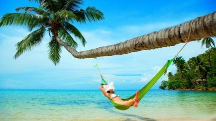Hammock on a palm tree