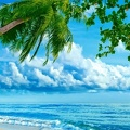 Plage - wallpaper HD (2)