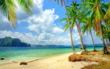 Beach in the Islands - HD