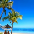 tropical-paradise-beach-palms-7522