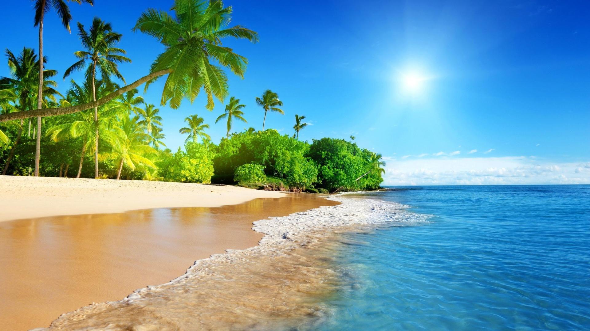 Vacances tropicales - Fond d'écran HD