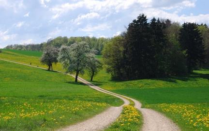 Path in the near