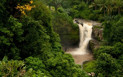 Waterfalls in the jungle