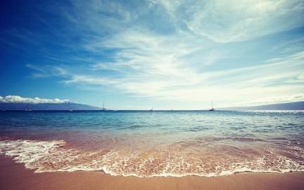 Seaside in summer