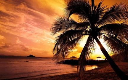 Sunset - Summer Season