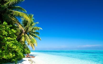 Landscape - white sand beach