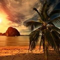 Plage tropicale - Wallpaper