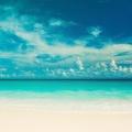 Océan horizon - plage