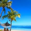 tropical-paradise-beach-palms-7522