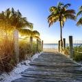 Vers la plage ensoleillée