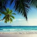 Vivement les vacances
