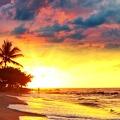 Plage tropicale - coucher de soleil