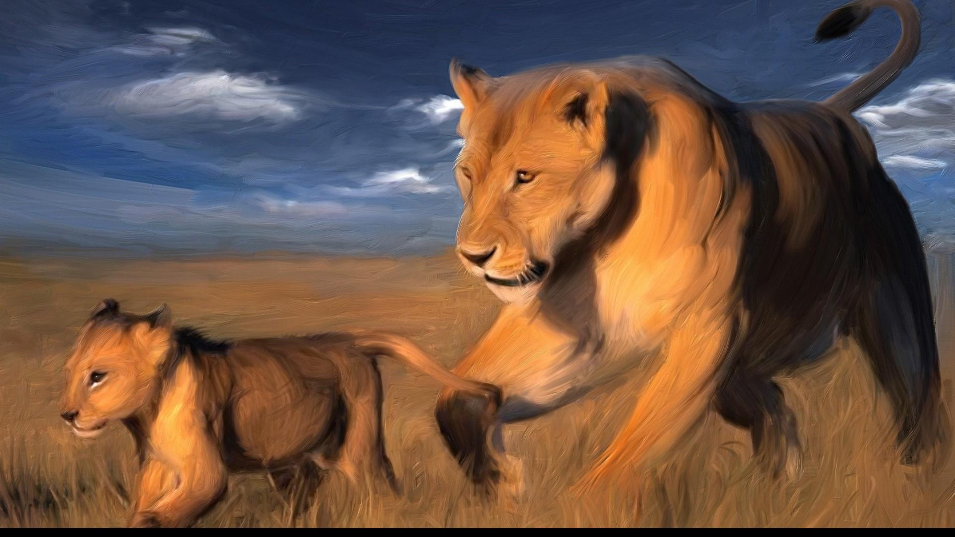 Dessin Lionne Et Lionceau Fond D Ecran Hd